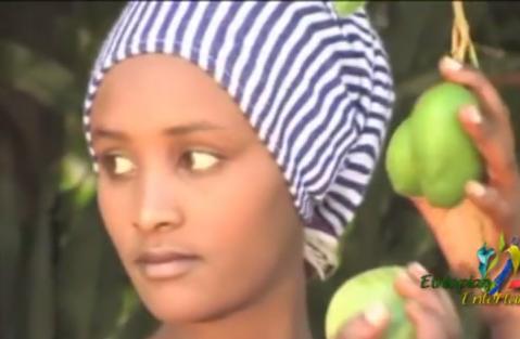 Abreham Belayneh - Shalaye (Ethiopian Music)